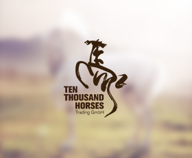 Ten Thousand Horses Trading GmbH